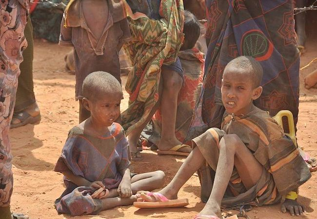 Photo of East Africa food crisis indicates urgent need for a world food policy