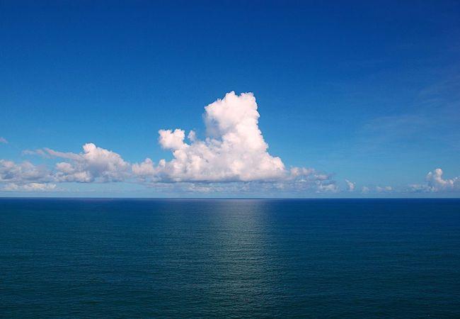 Photo of Our vanishing world: Oceans
