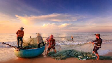 Photo of Local communities play outsized but overlooked role in global fisheries