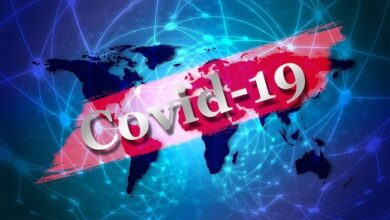 Photo of The Coronavirus: Crown jewel of the NWO or crippling blow to globalization?