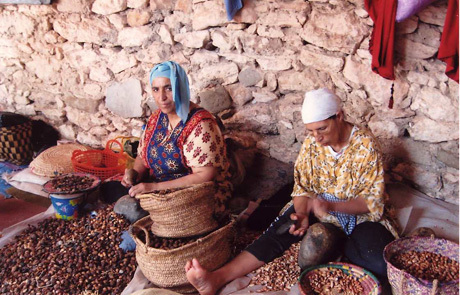 Women's Argan collective in rural North Africa