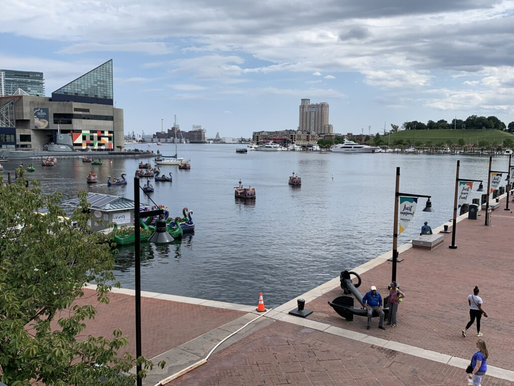 Cedars Balto Inner Harbor