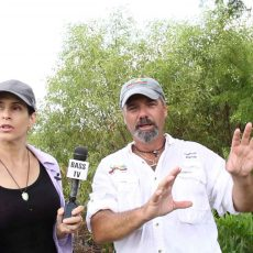 airboat tours in everglades 4