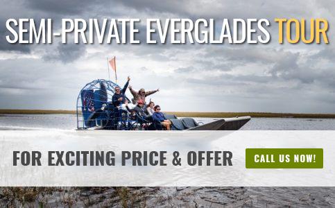 Semi Private Everglades Tour