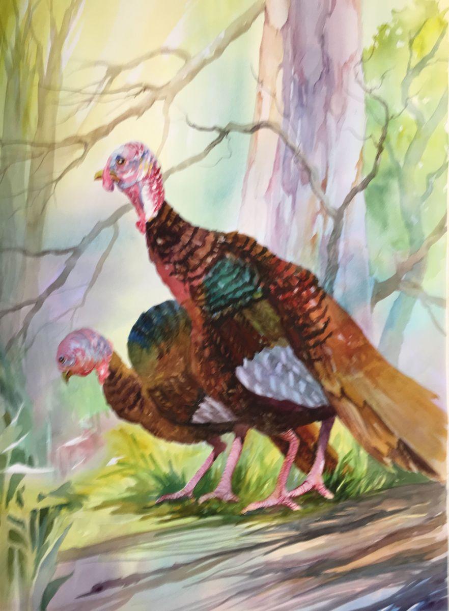 ADAMS-JoAnn-Wild Turkeys 22x30