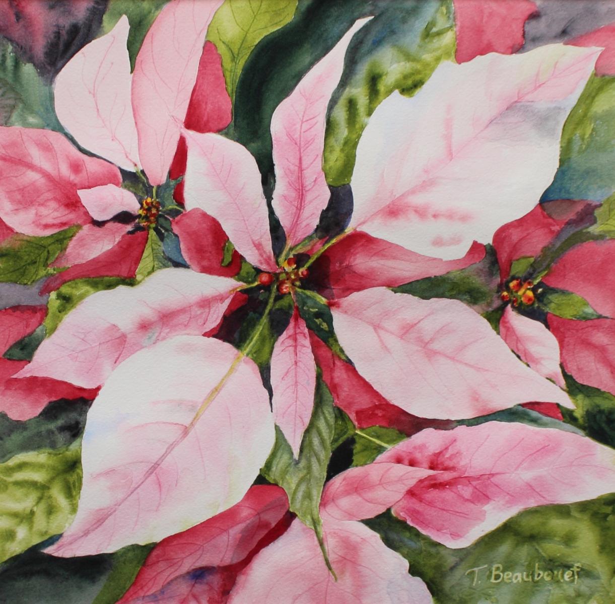 Beaubouef-Theresa-Pink-Poinsettias-14x14