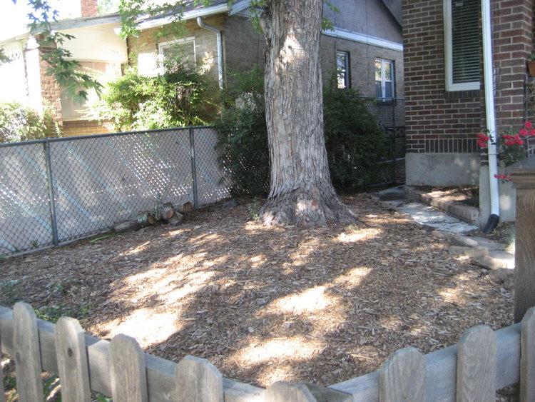 Original front yard flower bed