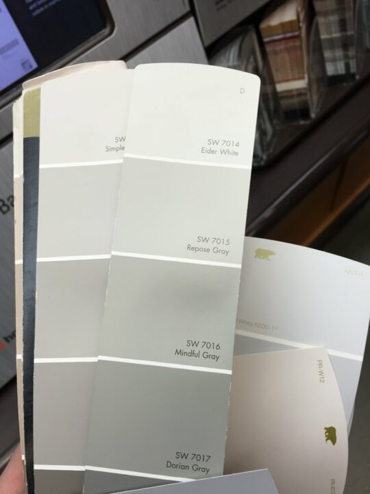 Repose Gray color family - great greige colors