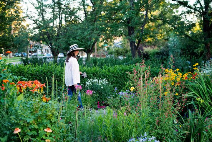 Jan tending to her English garden in Denver, CO