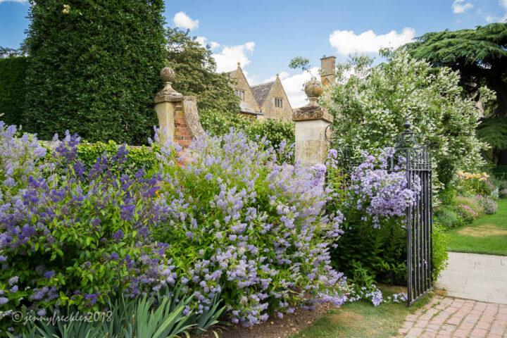 English garden inspiration