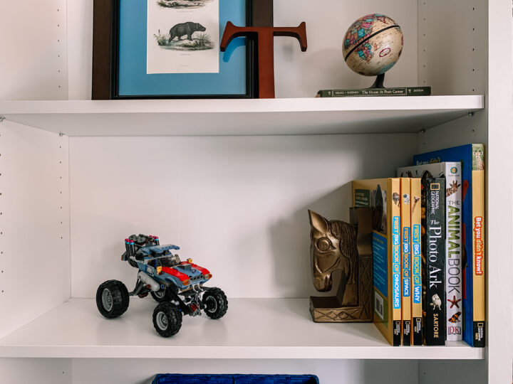 Toy storage and organization