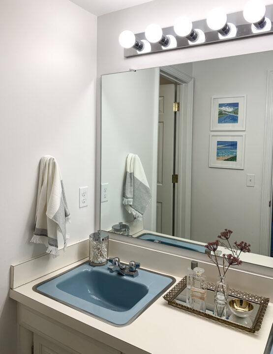 Modern master bathroom makeover | Building Bluebird