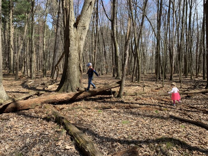 Explore Toledo Metroparks with your kids - Oak Openings