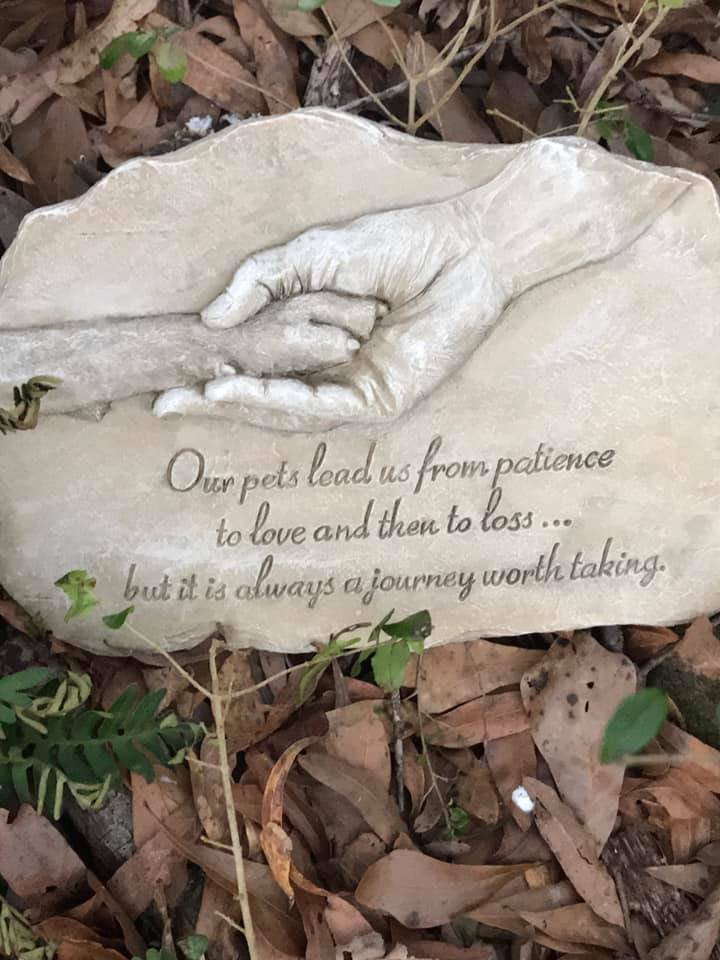 rainbow bridge 6