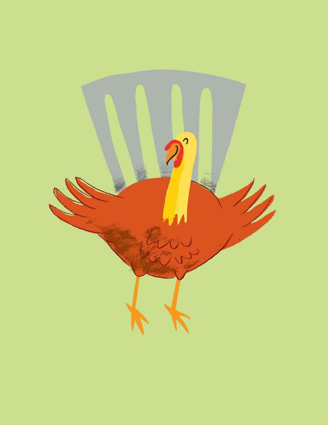 turkey1a
