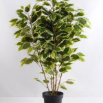 Artificial Tree 80cm Ficus GF18091-455P0P4