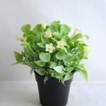 Artificial Flower 19*19*21cm Mini flower in plastic pot GS-03319254-W1