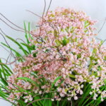 Artificial Flower 26*22*27CM Succulent in basket GS-30319006+P