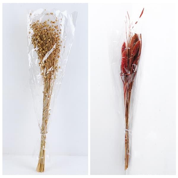 yeahflower dried flowers PENNISETUM ALOPECUROIDE  - Dried Flowers Everlasting Flowers Our 126th Canton Fair Bestsellers