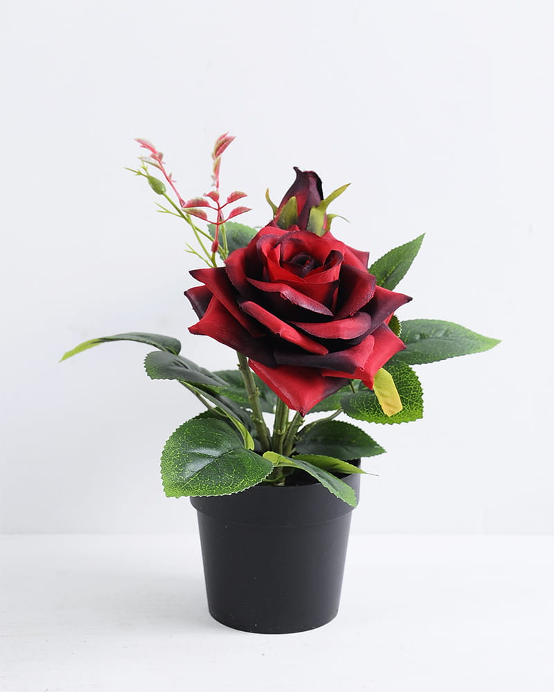 Artificial Flower 23*26*23CM Rose in plastic pot GS-05520003