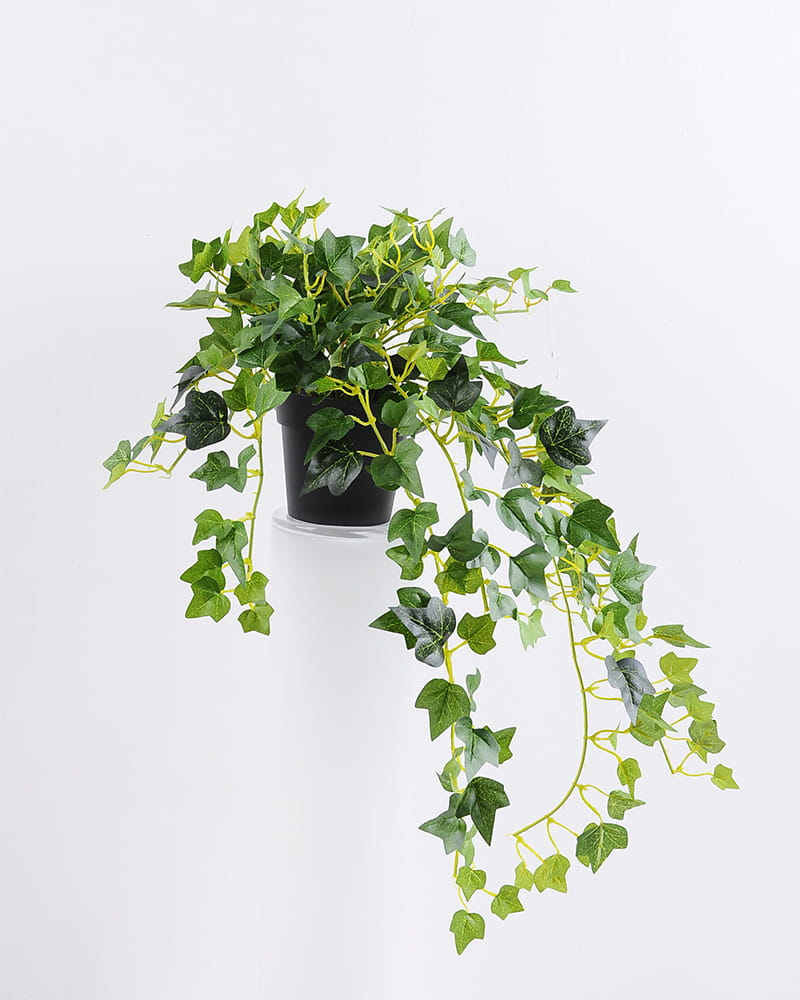 Artificial Plant H:37*29*38CM Ivy garland in plastic pot GS-0338958P4P48-G1
