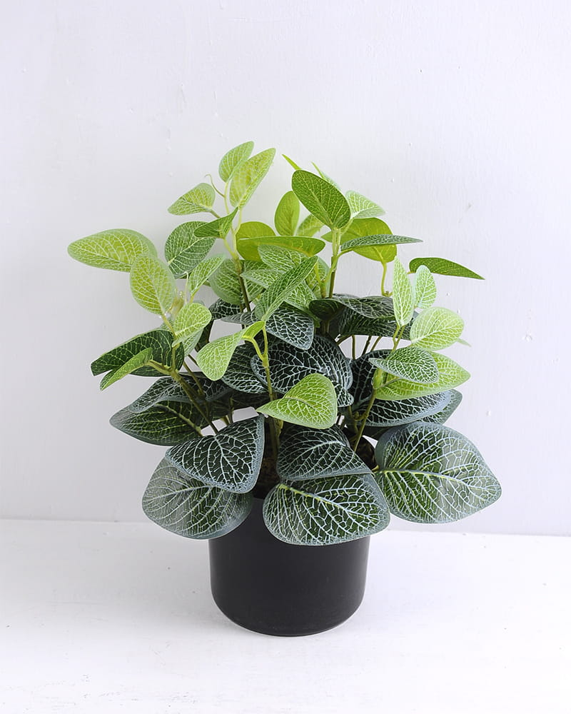 Artificial Plant 22*22*12cm Morning glory in Basket GS-03319243