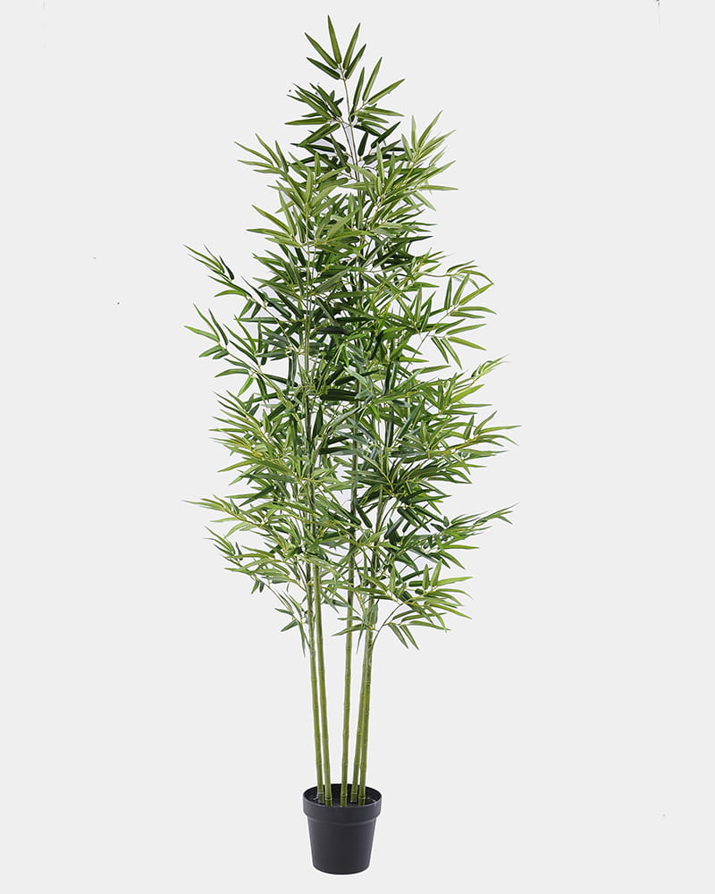 Artificial Tree 72*66*146CM Bamboo tree in the plastic pot/lvs825 GS-30419086