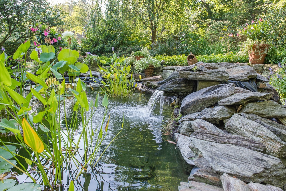 Pondscaping in West Chester PA