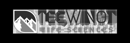gray scale teewinot
