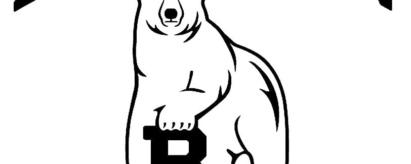 Bowdoin Postpones Start Of Women's Hockey Season