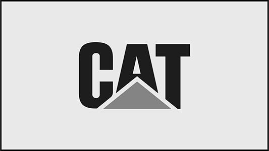 OddMach_CAT_NewToy_Tacos_Board_21