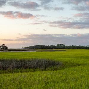 Salt Marsh on the intracoastal waterway in Florida