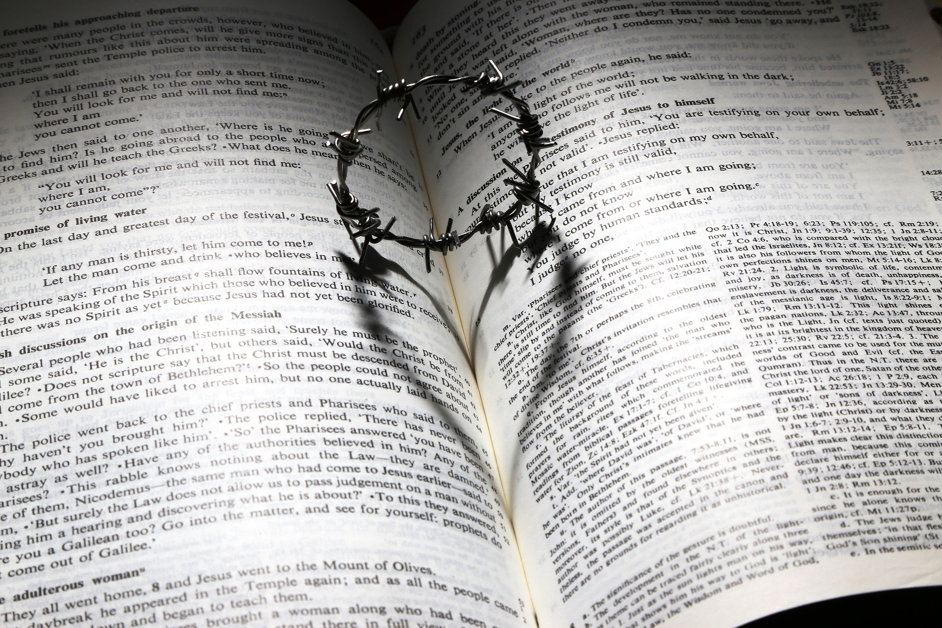 Bible love thorns