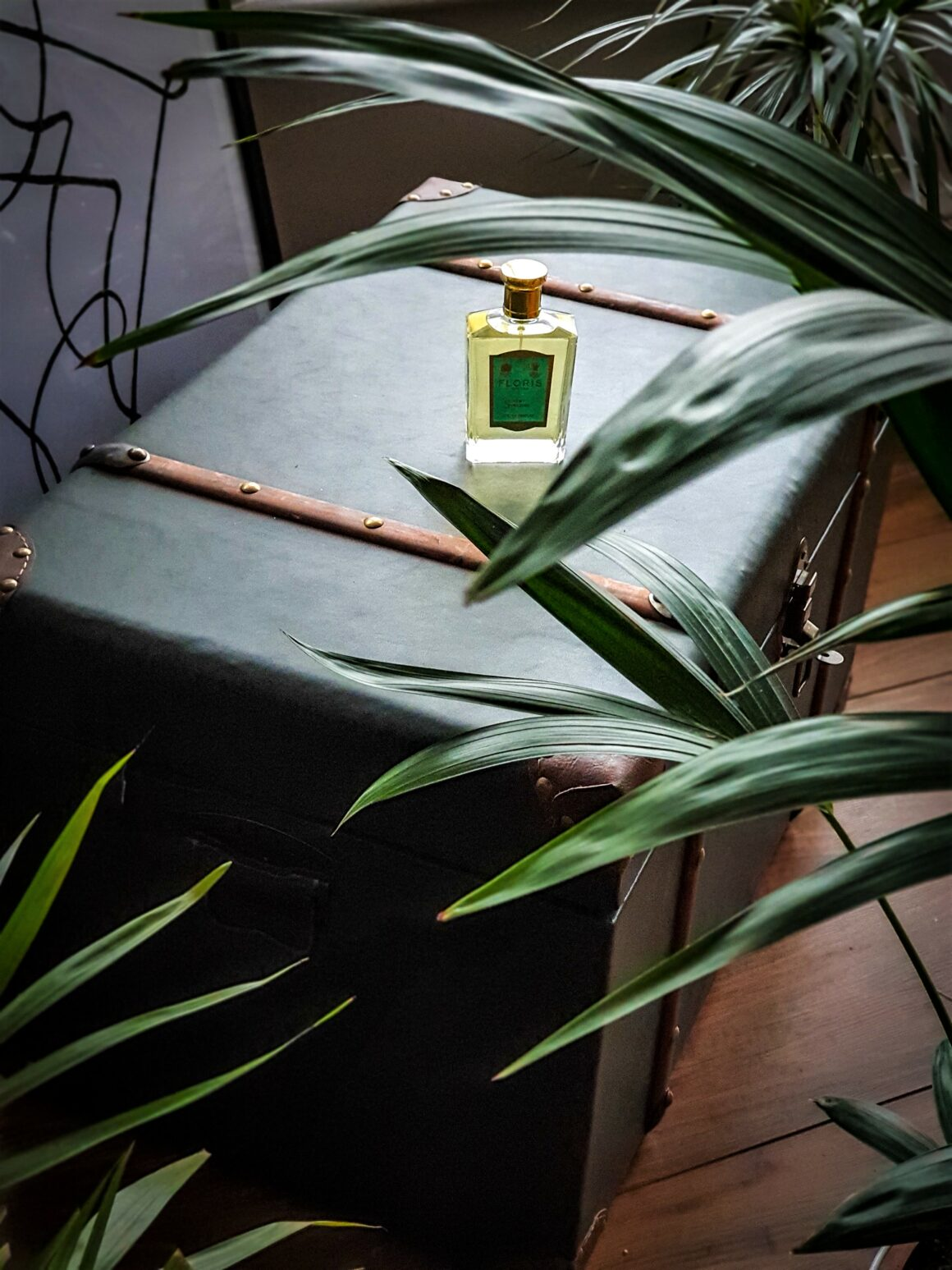 Precisely picked Christmas presents for him - Floris London Vert Fougère