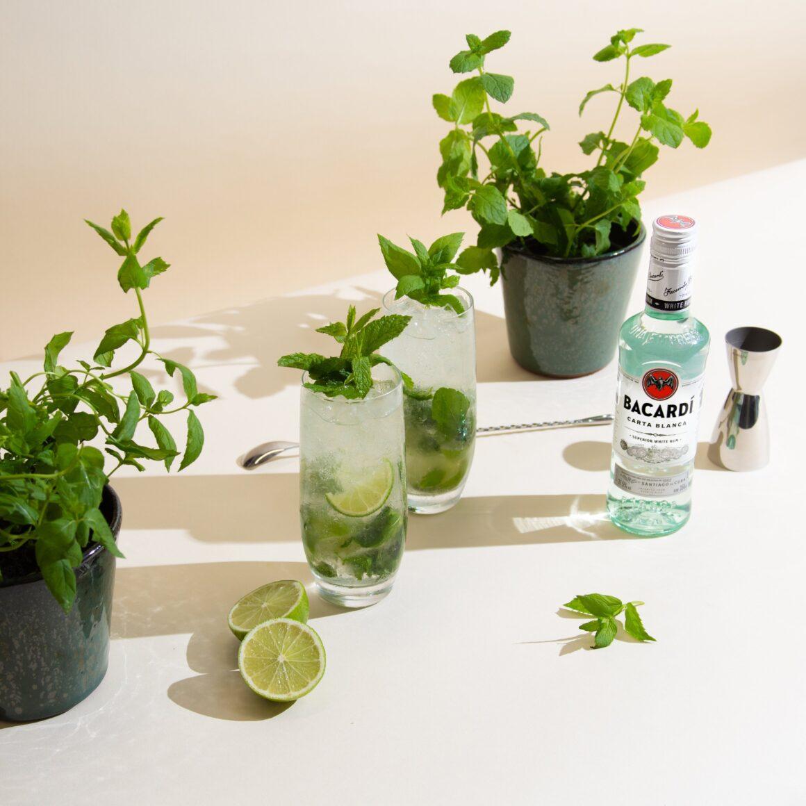 Grow Your Own Garnish Kits - Bacardi X Floom. Bacardi Rum