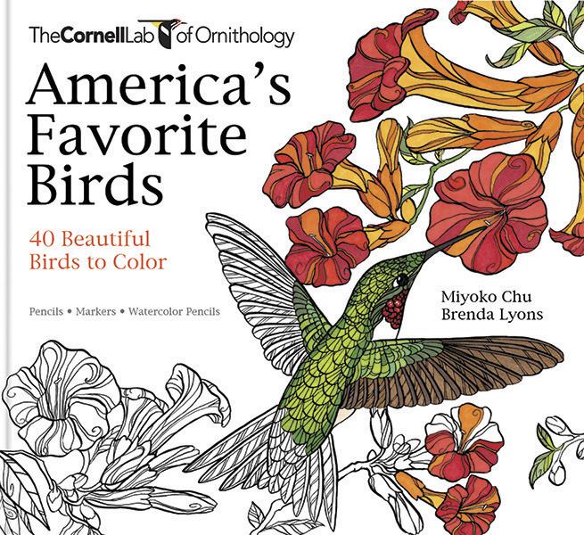 America's-Favorite-Birds-COVER-02