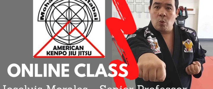 (Day 3 )Online Classes for Students, Members and friends of American Kenpo Jiu Jitsu Academy