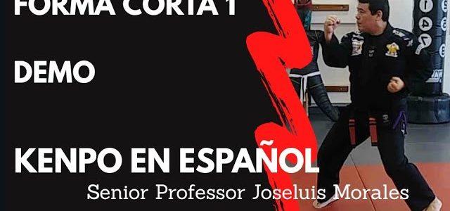 KENPO EN ESPAÑOL – Forma Corta 1 – DEMO – Joseluis Morales S.P