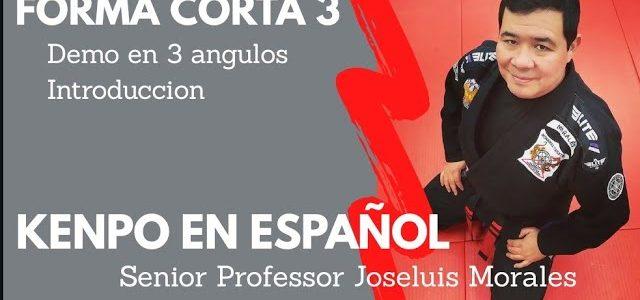 KENPO EN ESPAÑOL – Forma Corta 3 – 1ra Parte – DEMO & INTRO – Joseluis Morales S.P