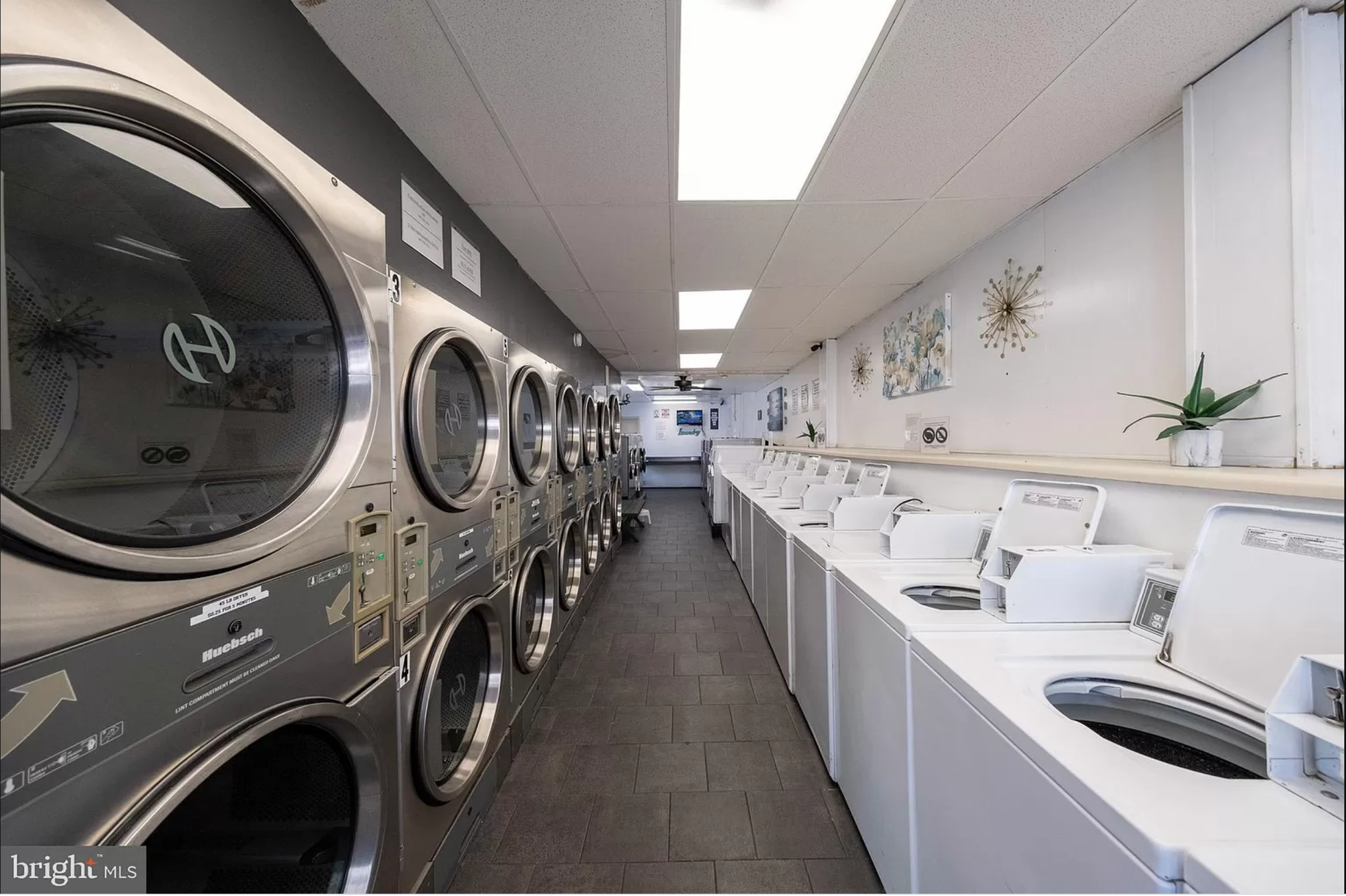 The Laundry King – Reading, PA