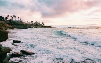 Internships in San Diego: The Culture, Where to Live, and the Best Companies to Work For
