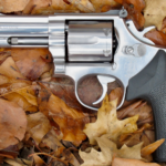 The Smith & Wesson L-Frame Story