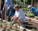 irem-helping-hands-event-at-canyon-acres-client-eddie-edmiston-planting-the-garden