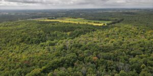 Long Sault Conservation Area Drone Footage On The Oak Ridges Moraine