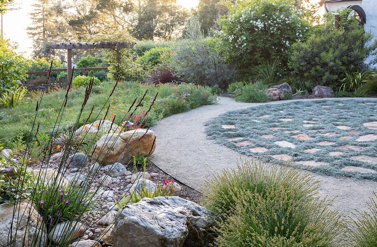 6-berkeley-backyard