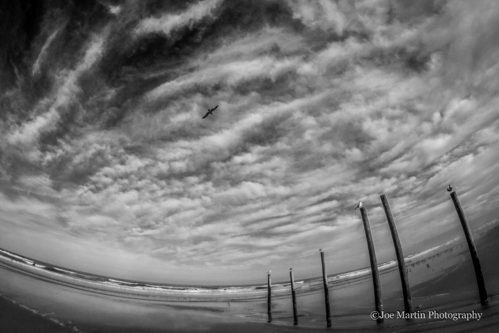 Photo of the ocean with seagulls and all wooden pillars showing the clouds