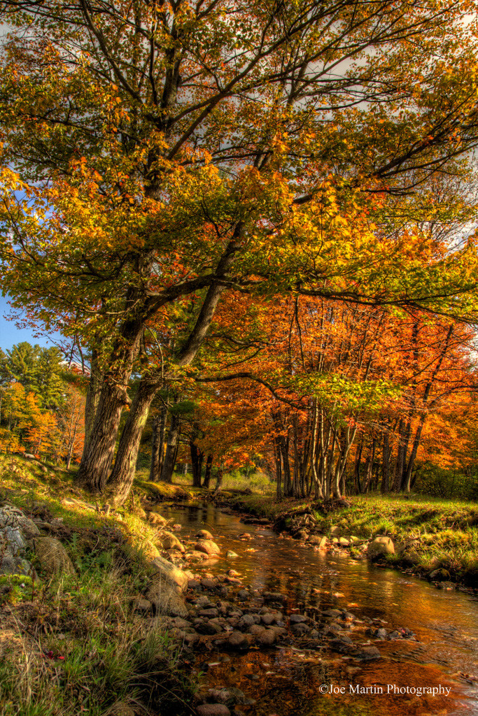 image of a river and fall colors on trees