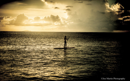 silhouette photo of a girl paddle boarding on the ocean