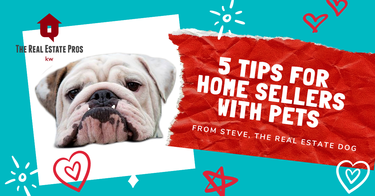 5 Tips for Home Sellers with Pets
