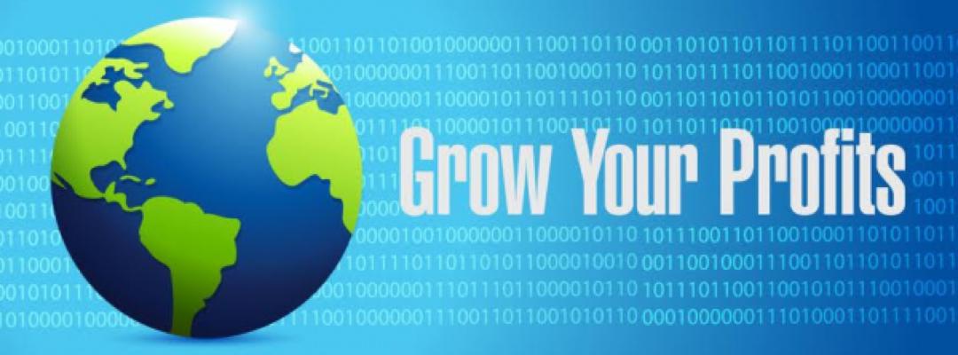 Amazon Business Growth